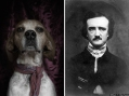2015-01-11-EdgarAllanPoe-thumb